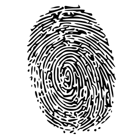 Picture of a fingerprint