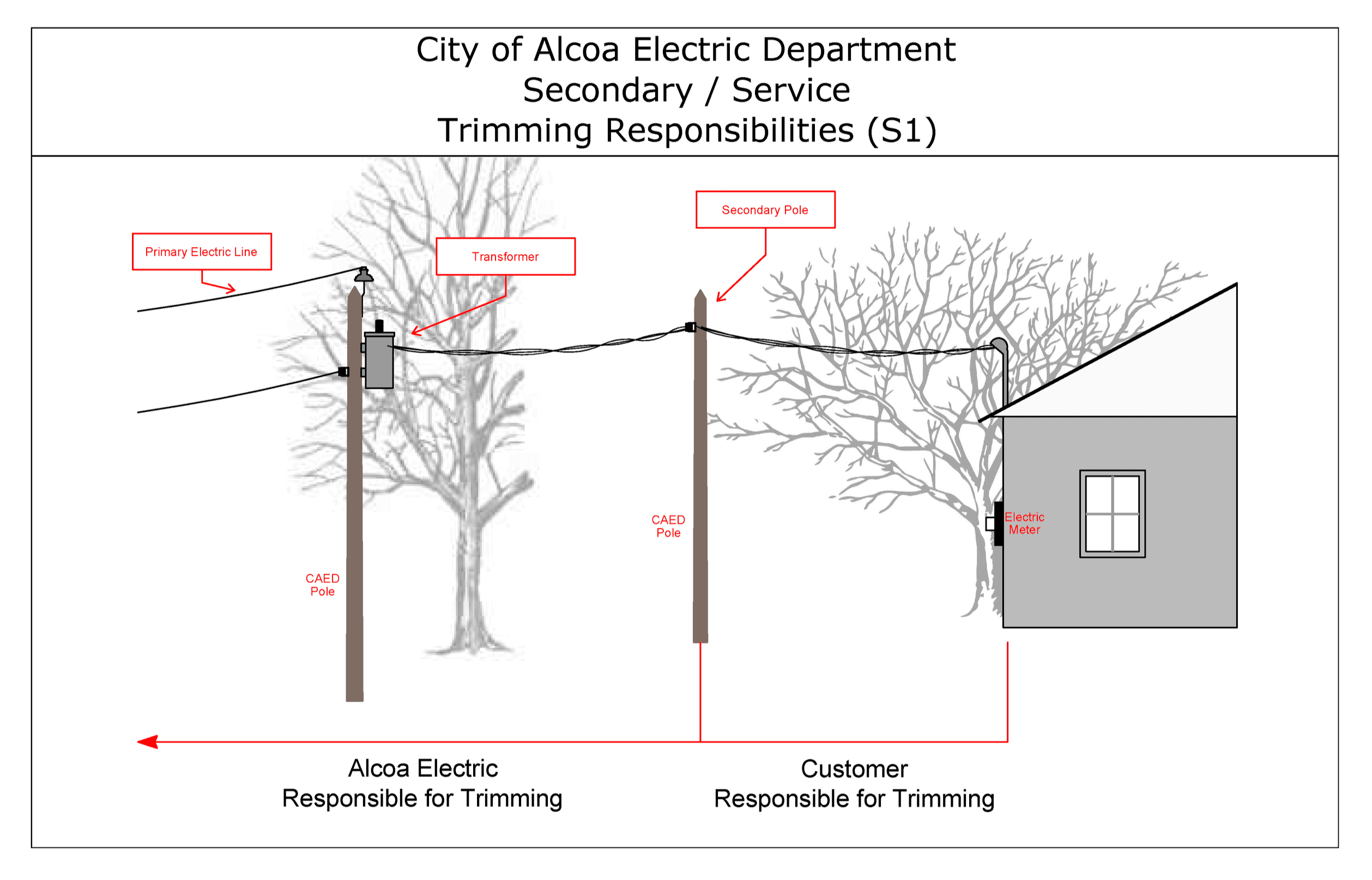 Image showing customer responsible tree trimming standards Opens in new window